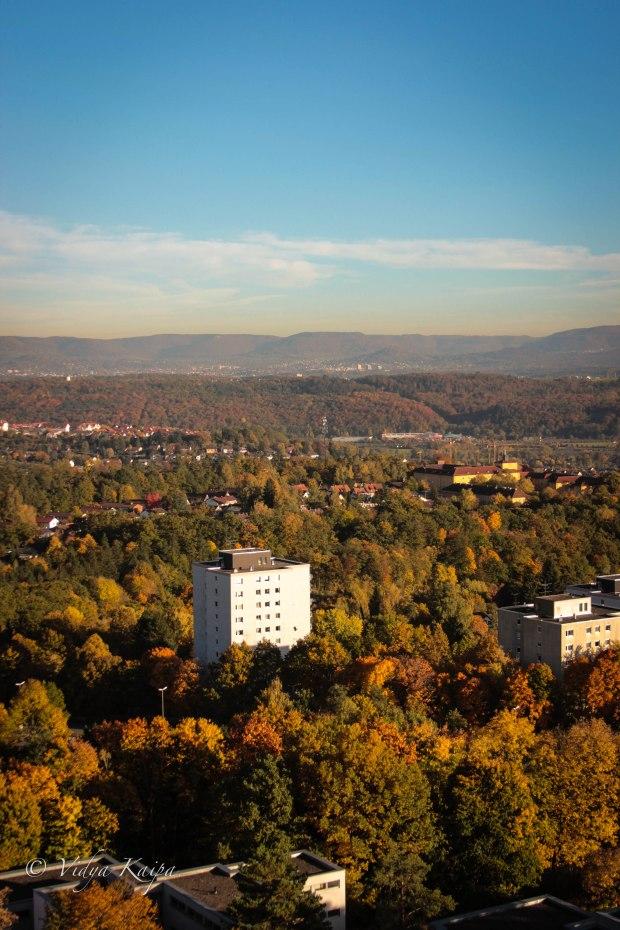 Tubingen Cityscape