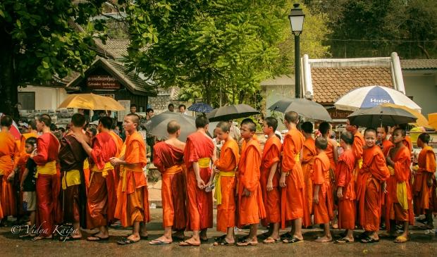 Luang Prabang, Laos - Monk Procession during Sabaidee Peemai